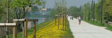 Percorsi arginali argine argini verde fiume lungargine 380 ant