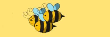 """Progetto """"Padova città delle api"""" 380 ant"""