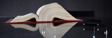 Statuto e regolamenti volume libro documento scrivania 380 ant fotolia 49472614