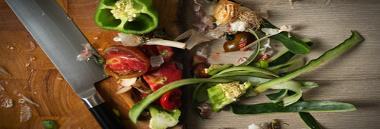 scarti rifiuti compostaggio domestico 380 ant